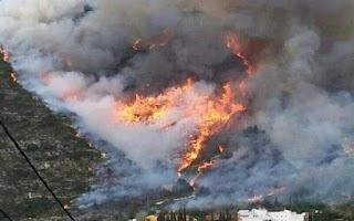 http://www.efeagro.com/noticia/incendios-forestales-riesgo/