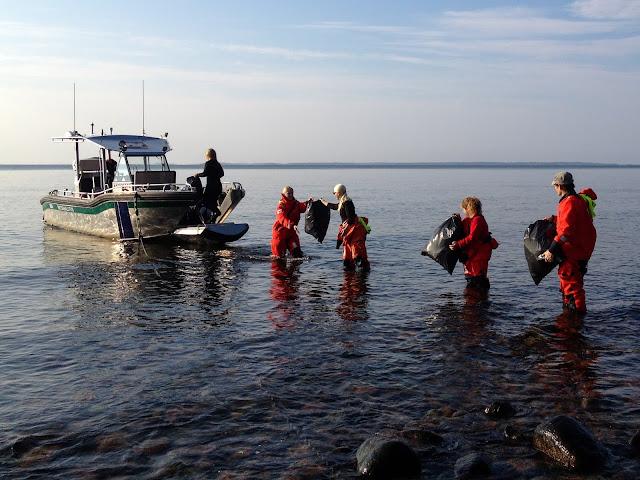 Monta pelastautumispukuista henkilöä seisoo jonossa vedessä ja lastaa täysiä roskasäkkejä saaresta veneeseen