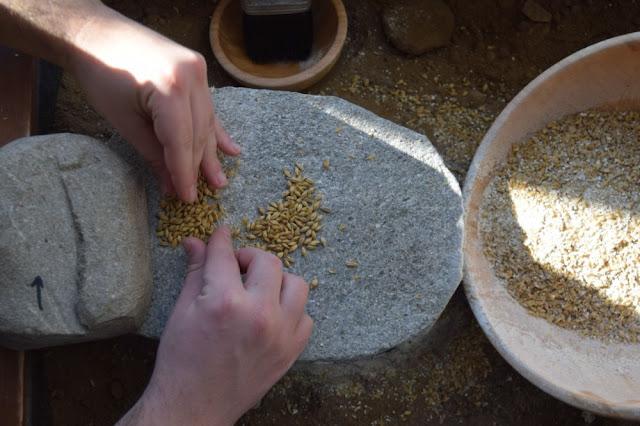 Πριν 6000 χρόνια έφτιαχναν μπύρα, πλιγούρι και τραχανά στην Μακεδονία