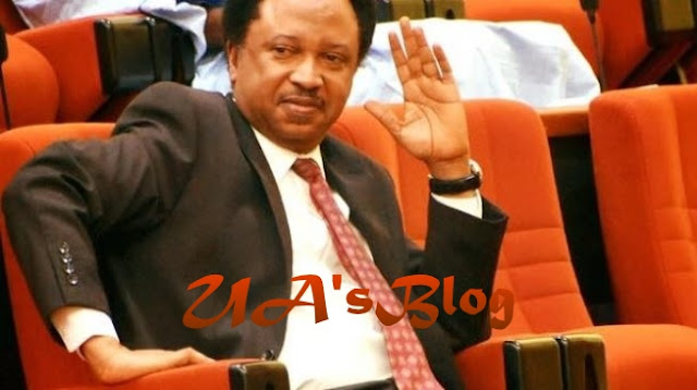 Alleged scam: Shehu Sani leads EFCC's operatives to search Abuja home