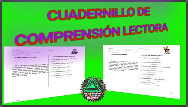 CUADERNO DE COMPRENSIÓN LECTORA