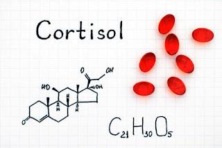 توازن هرمون الكورتيزول ضروري للتحكم بوظائف الجسم