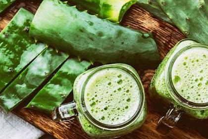 Many Benefits That We Can Find In Aloe Vera for Facial Health