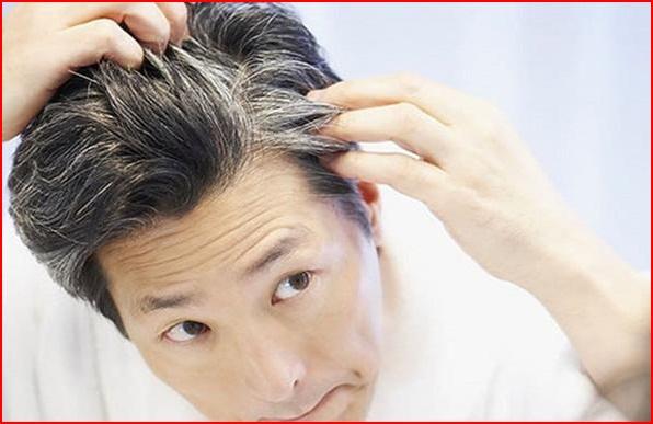अब आपके सफेद बाल होंगे काले, सिर्फ करने होंगे ये उपाय, जानें