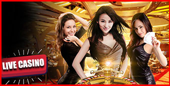 Live Casino Hokicash