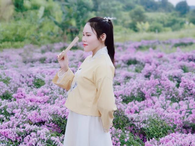 Vườn hoa thạch thảo tím Đà Lạt