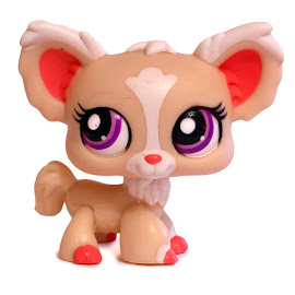 Littlest Pet Shop Special Chihuahua (#1892) Pet