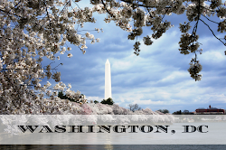 Washington DC Travel Blog