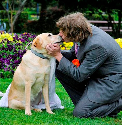 Pria Menikahi Anjing Bosan Mungkin