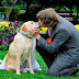 Pria Menikahi Anjing Bosan Mungkin Sama Manusia Biasa, Ada Ada Saja