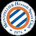 Daftar Skuad Pemain Montpellier HSC 2016-2017