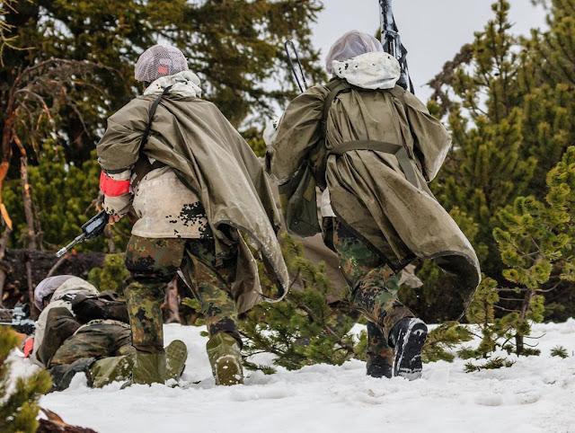 Armée Allemande (Bundeswehr) - Page 10 60723324_669910716762603_5077281401376387092_n
