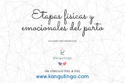 ETAPAS FISICAS Y EMOCIONALES DEL PARTO