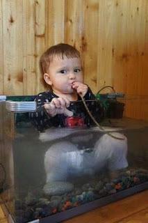Niño dentro de pecera chupando un cable