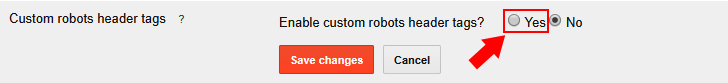 seo ke liye custom robots header tag kaise use kare