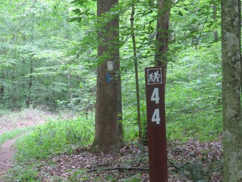 Knobstone trail mile 44