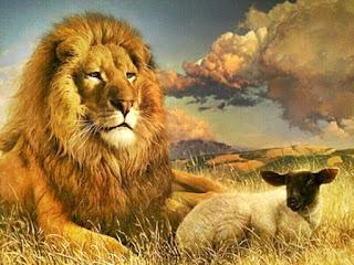 """""""E morará o lobo com o cordeiro, e o leopardo com o cabrito se deitará, e o bezerro, e o filho de leão e o animal cevado andarão juntos, e um menino pequeno os guiará (Isaías 11:6)"""