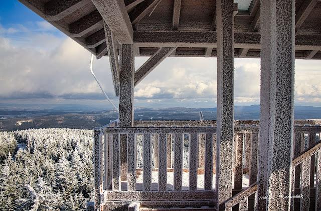 Widok z wieży na Orlicy
