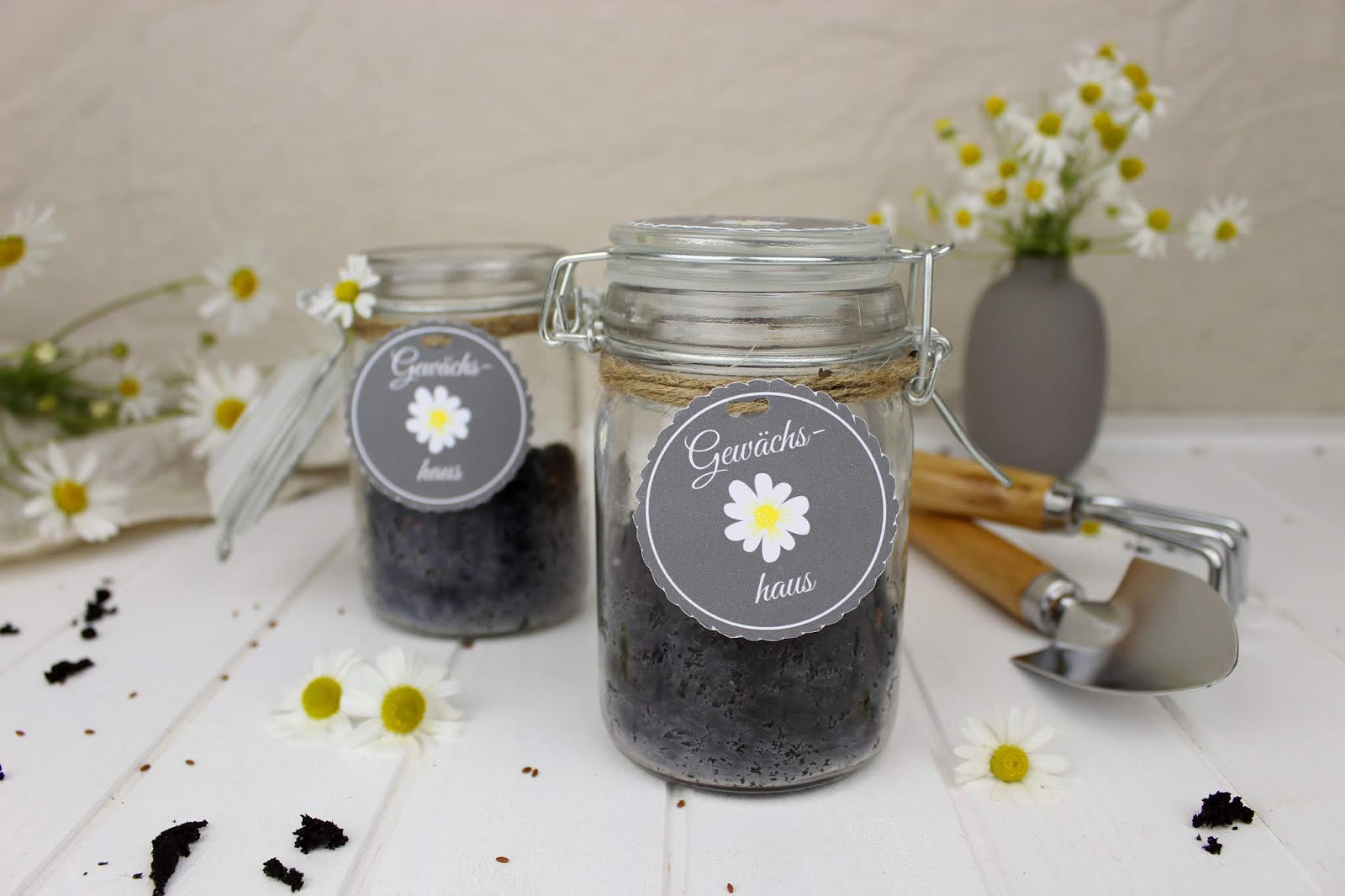 DIY - Mini Gewächshaus im Glas - perfekte Geschenkidee für den Sommer + gratis Etikett