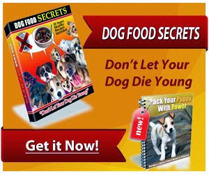Dog food secrets review, dog food secrets book, dog food secrets pdf, dog food secrets reviews, dog food secrets free download