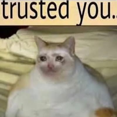 crying cat meme,sad cat meme,sad cat,sad cat memes,cat sad,sad cat face,sad cat eyes,  cat sad meme,sad fat cat,sad crying cat, sad cowboy cat,sad cat png, crying cat,cat crying,  cat crying meme,crying cat memes,crying cat face,crying woman cat meme,meme cat crying