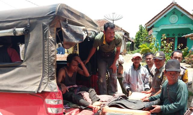 Diserang Gajah, Anggota Satgas TNBBS Patah Kaki