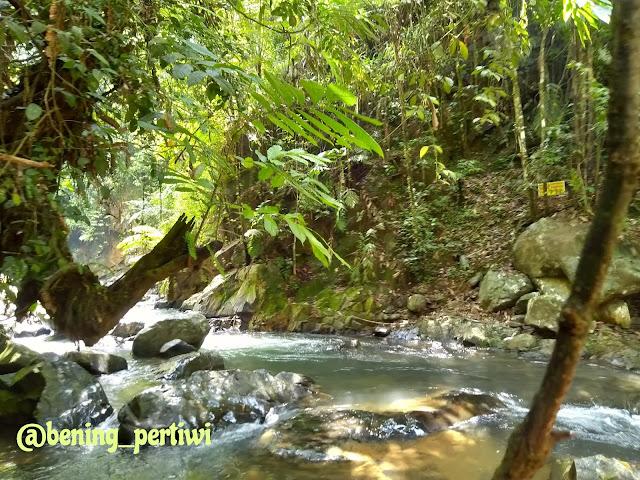 sungai masih pagi