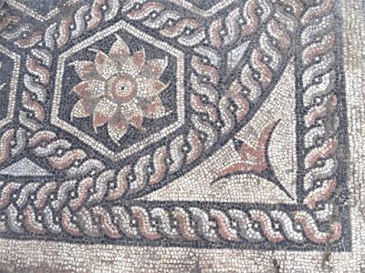 Στο φως μοναδικής ομορφιάς μωσαϊκό σε αρχαίο οικισμό στην Αλεξάνδρεια