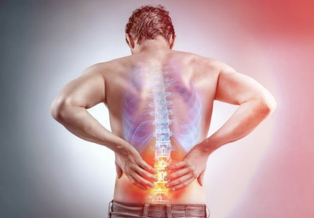 What Are The Causes Of Lower Back Pain In Our Body ?