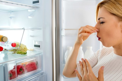 Bahan Alami untuk Menghilangkan Bau pada Kulkas
