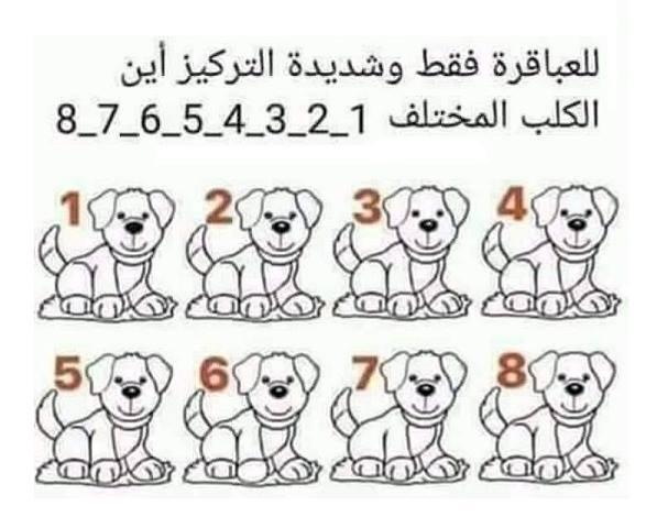 أين الكلب المختلف Where Is The Different Dog