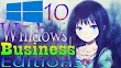 Windows 10 Business Editions 1903 Full Juni 2019