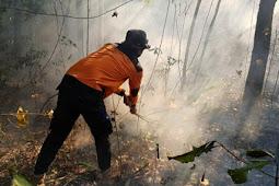 Kebakaran Hutan di NTB, ini Kata FPKB