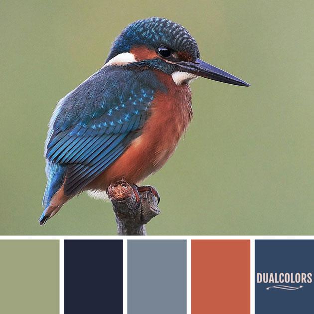 color_paleta_6
