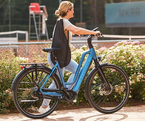 Gazelle Chamonix e-bike