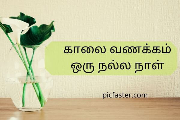 Latest - Good Morning Images In Tamil For Whatsapp 2020