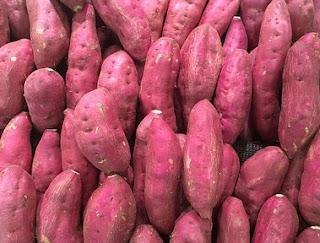 gambar bolehkah kelinci makan ubi jalar?