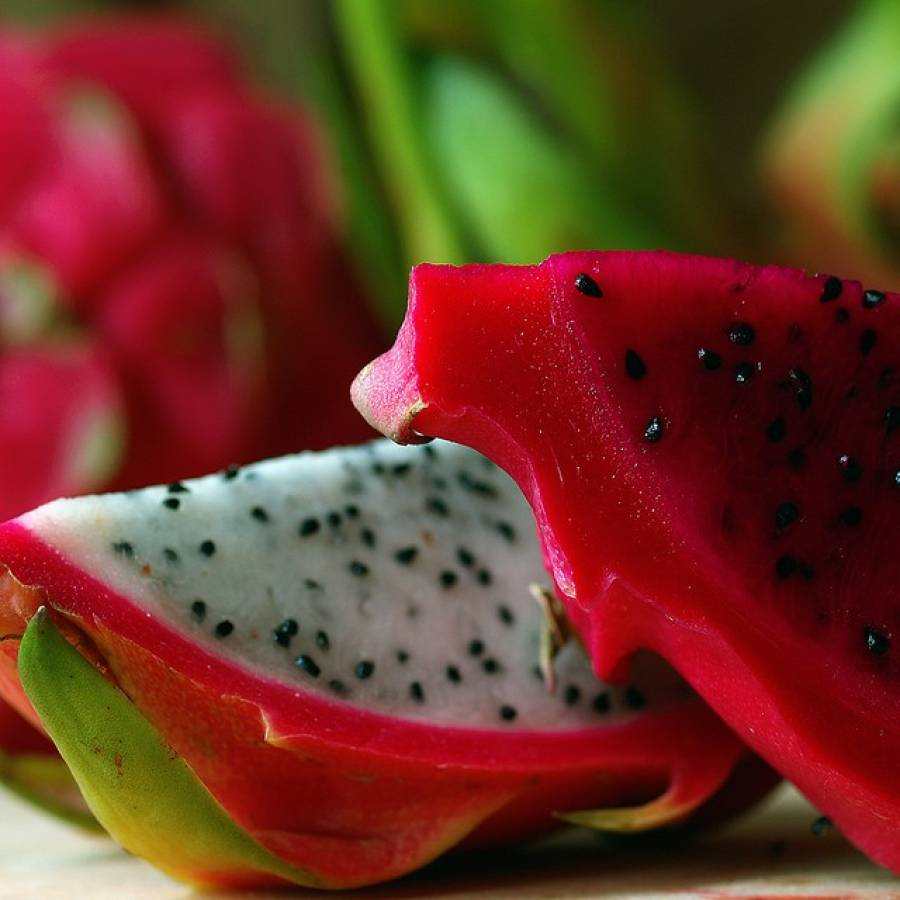 Dragon Fruit Benefits In Prostate Cancer Cures Ls Psychology, My Lifestyle  Targe T: Prostate