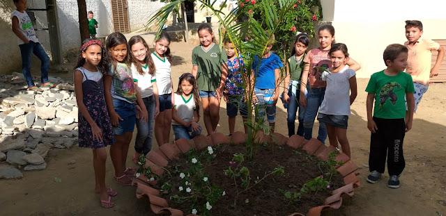 Resultado de imagem para meio ambiente escolas taquaritinga do norte