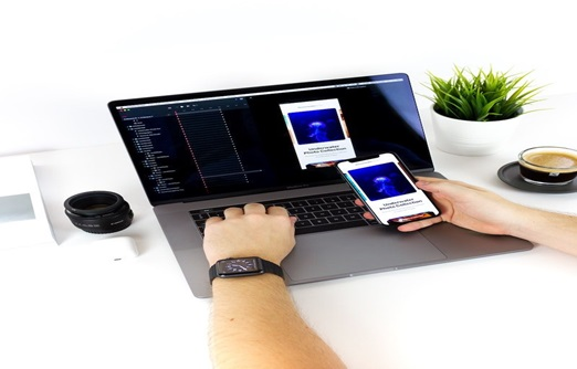 Developing a mobile APP or a Web APP?