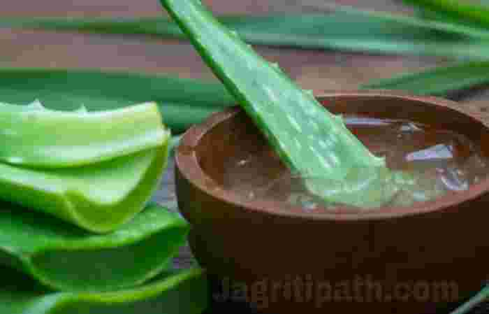 Benifits side effects Aloe Vera
