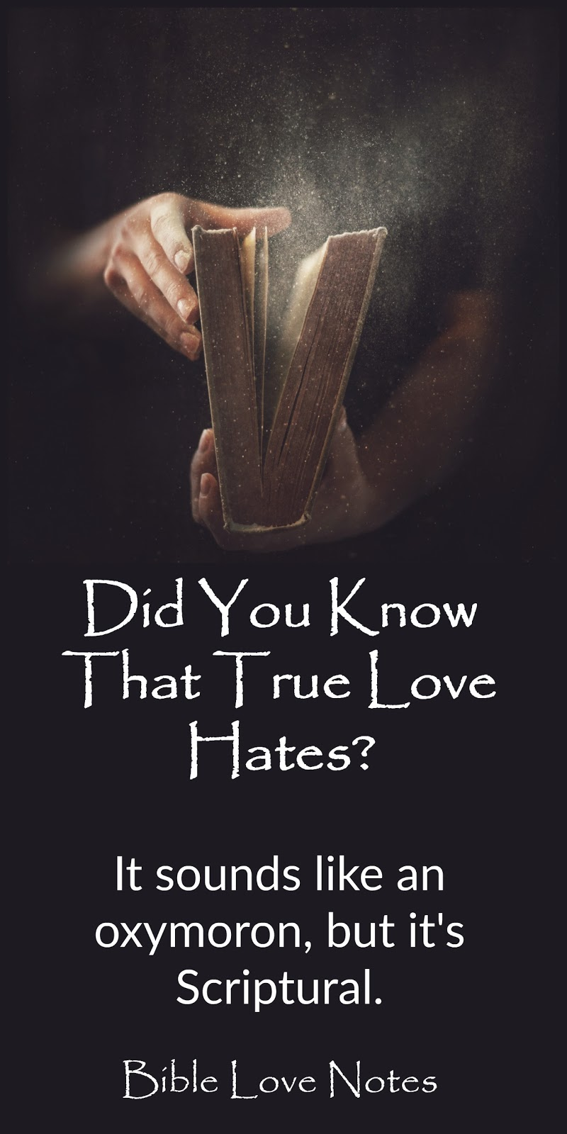 1-Minute Bible Love Notes: True Love Hates