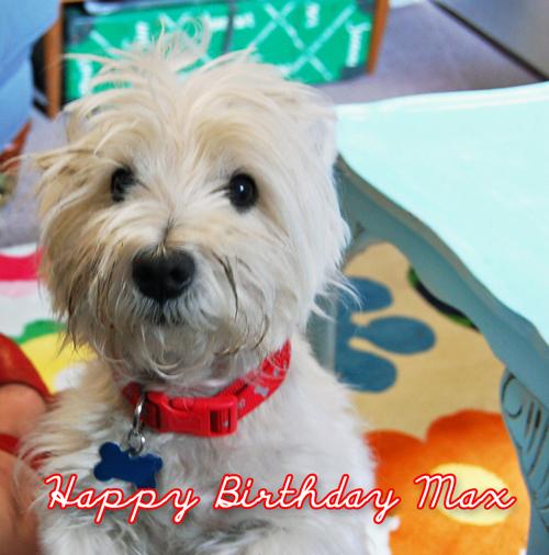 Happy Birthday Max Happy Loves Rosie