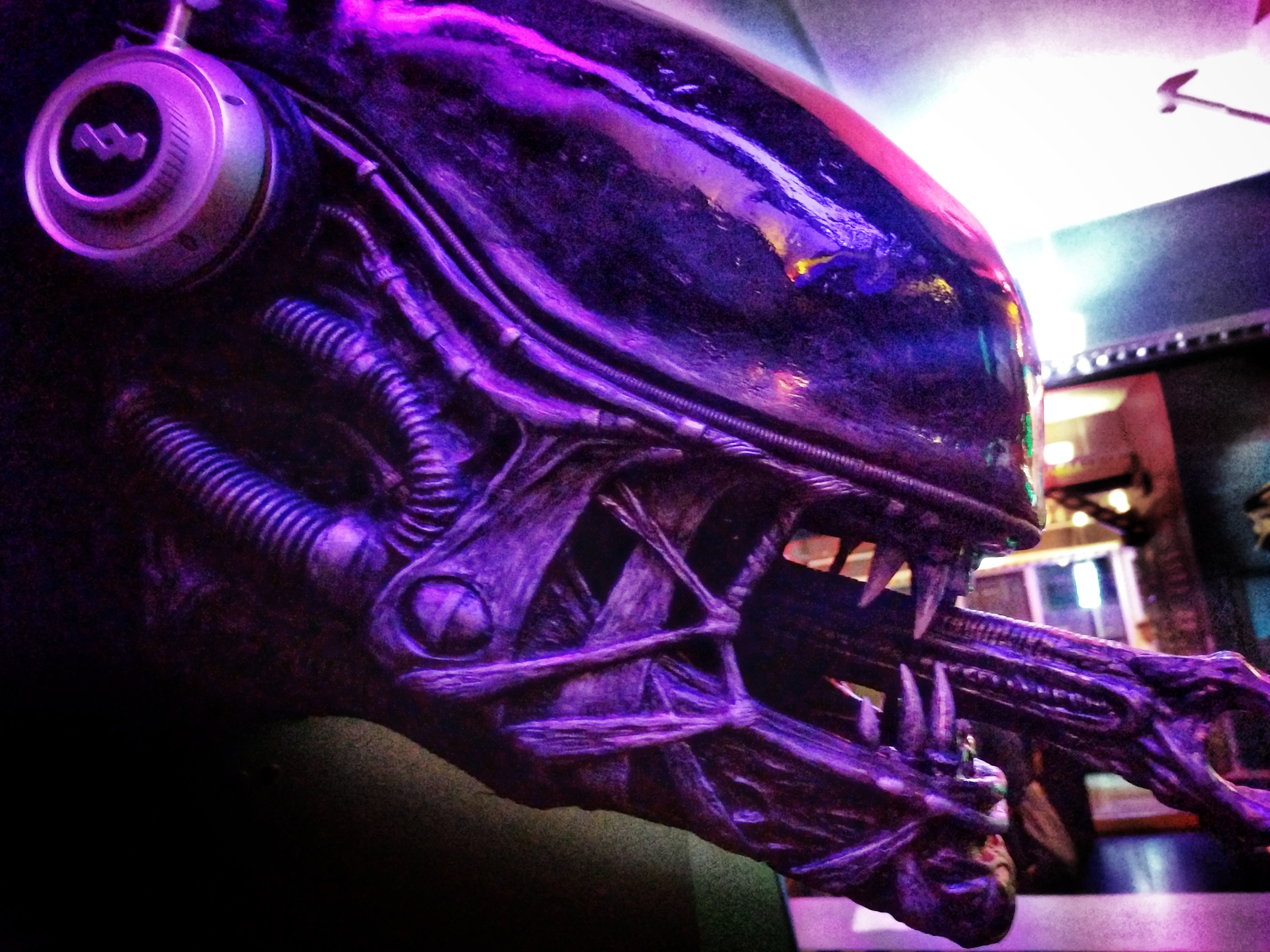Alien head model at the defunct Photonflux bar, Wellington