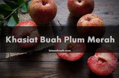 khasiat buah plum merah