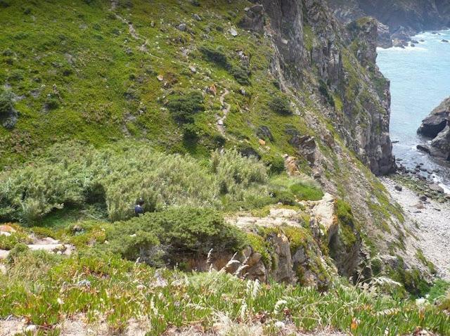 Sentiero che scende dalla scogliera di Cabo da Roca
