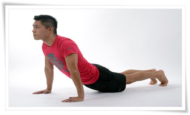 Combat back pain, Stretching to combat back pain