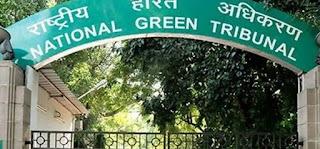 NGT shock for three projects in AP: Environmental permits are mandatory.  ఏపీలో మూడు ప్రాజెక్టులకు ఎన్జీటీ షాక్: పర్యావరణ అనుమతులు తప్పనిసరి..