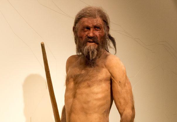 """Вчені з'ясували, як пройшли останні дні """"крижаної людини"""" Етці 5300 років тому"""