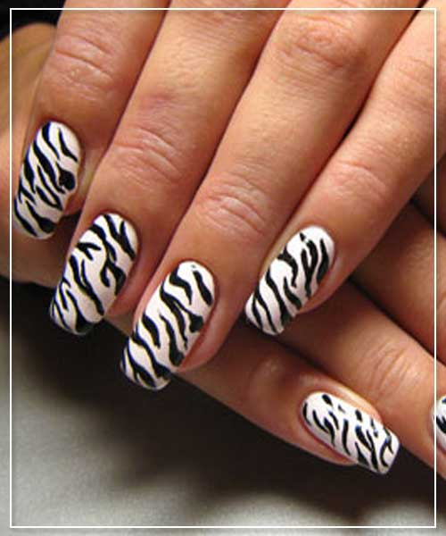 Zebra Stripes Nail Art Design